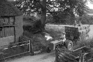 Haymaking by James Ravilious