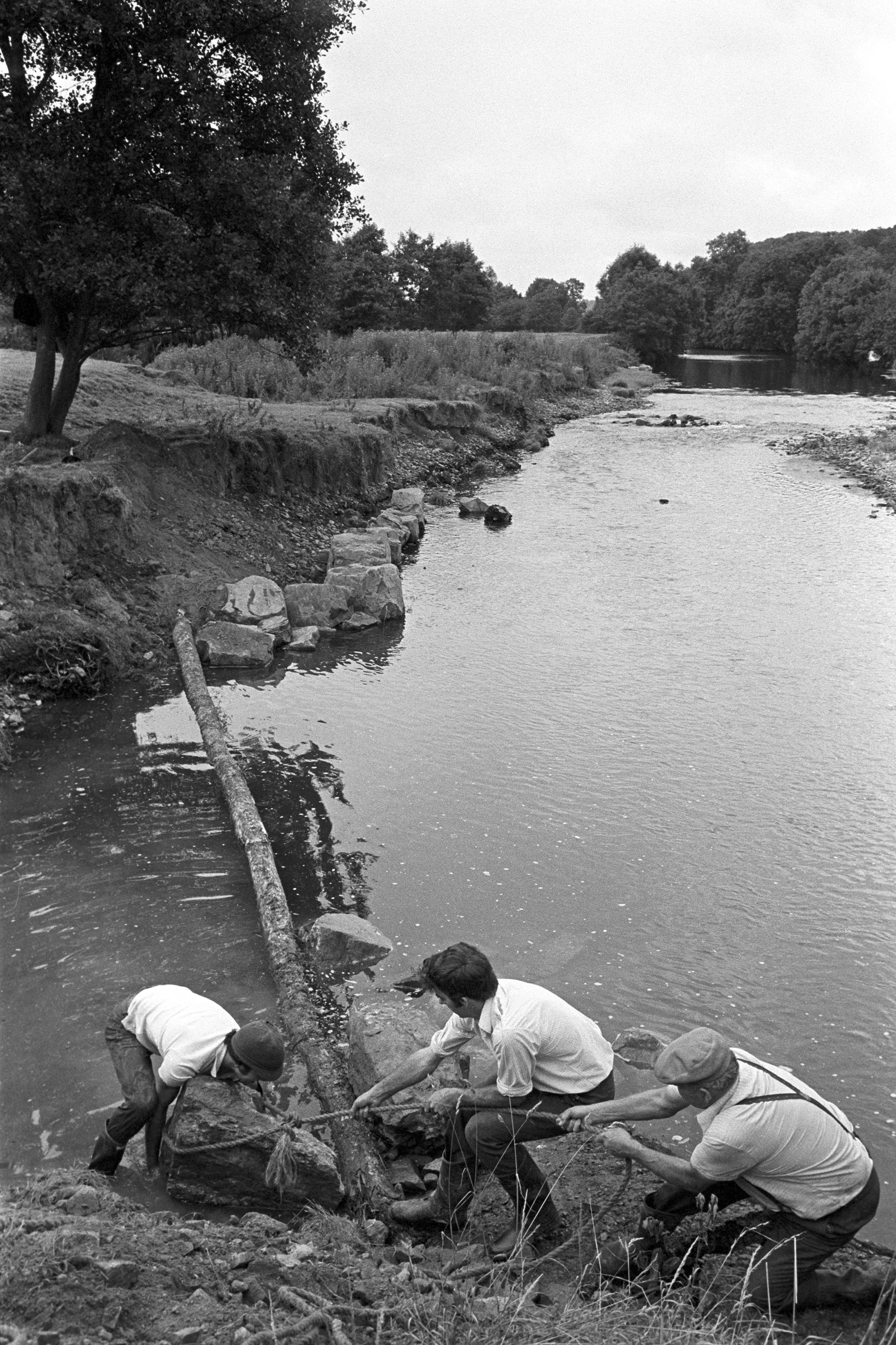 Farmers putting boulders to protect river bank. <br /> [John Ward, David Ward and Graham Ward moving boulders with a rope on a riverbank at Parsonage Farm, Iddesleigh, to protect the river bank from erosion.]