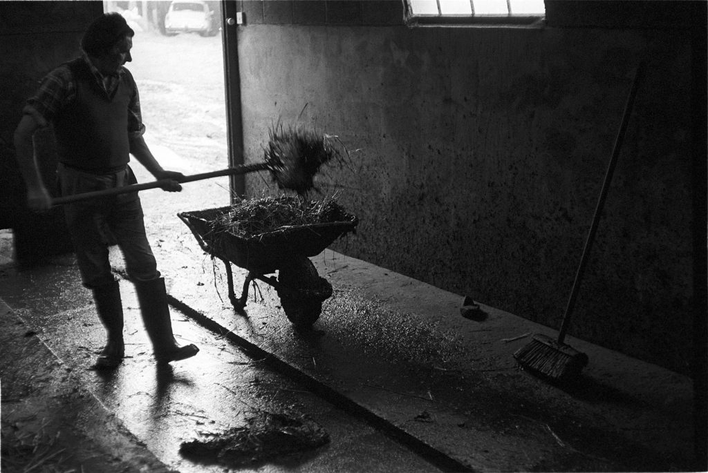 William Medland cleaning out the milking parlour by James Ravilious