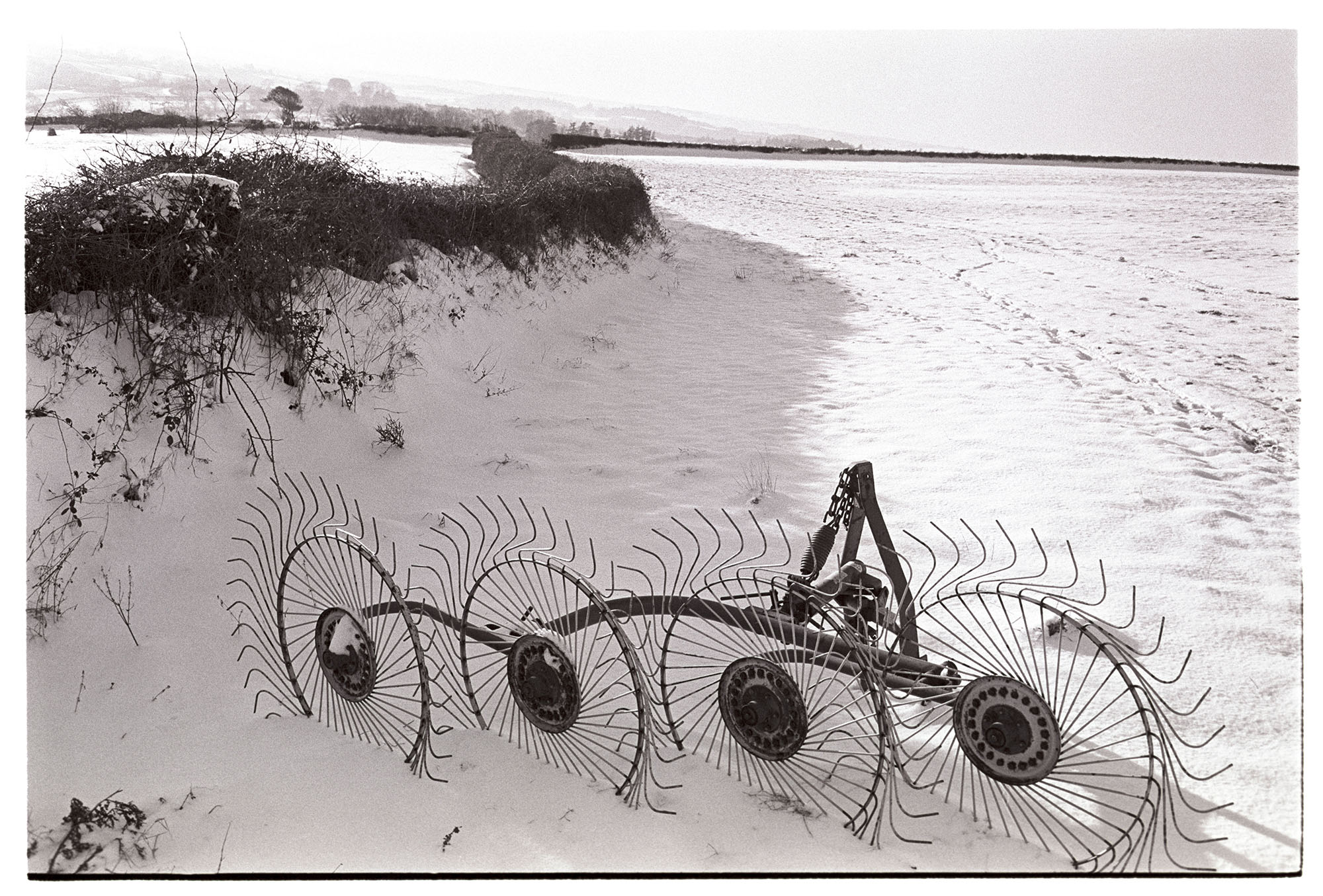 Whisk in snowy landscape. <br /> [A whisk by a hedge in a snow covered field at Parsonage, Dolton.]
