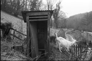 Outside toilet with goats by James Ravilious