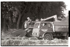 Combine harvester loading grain onto a lorry by James Ravilious