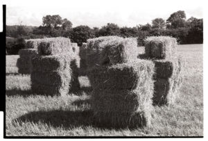 Stacked hay bales by James Ravilious
