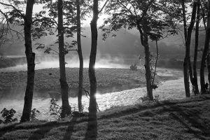 Early morning mist on the River Torridge by James Ravilious
