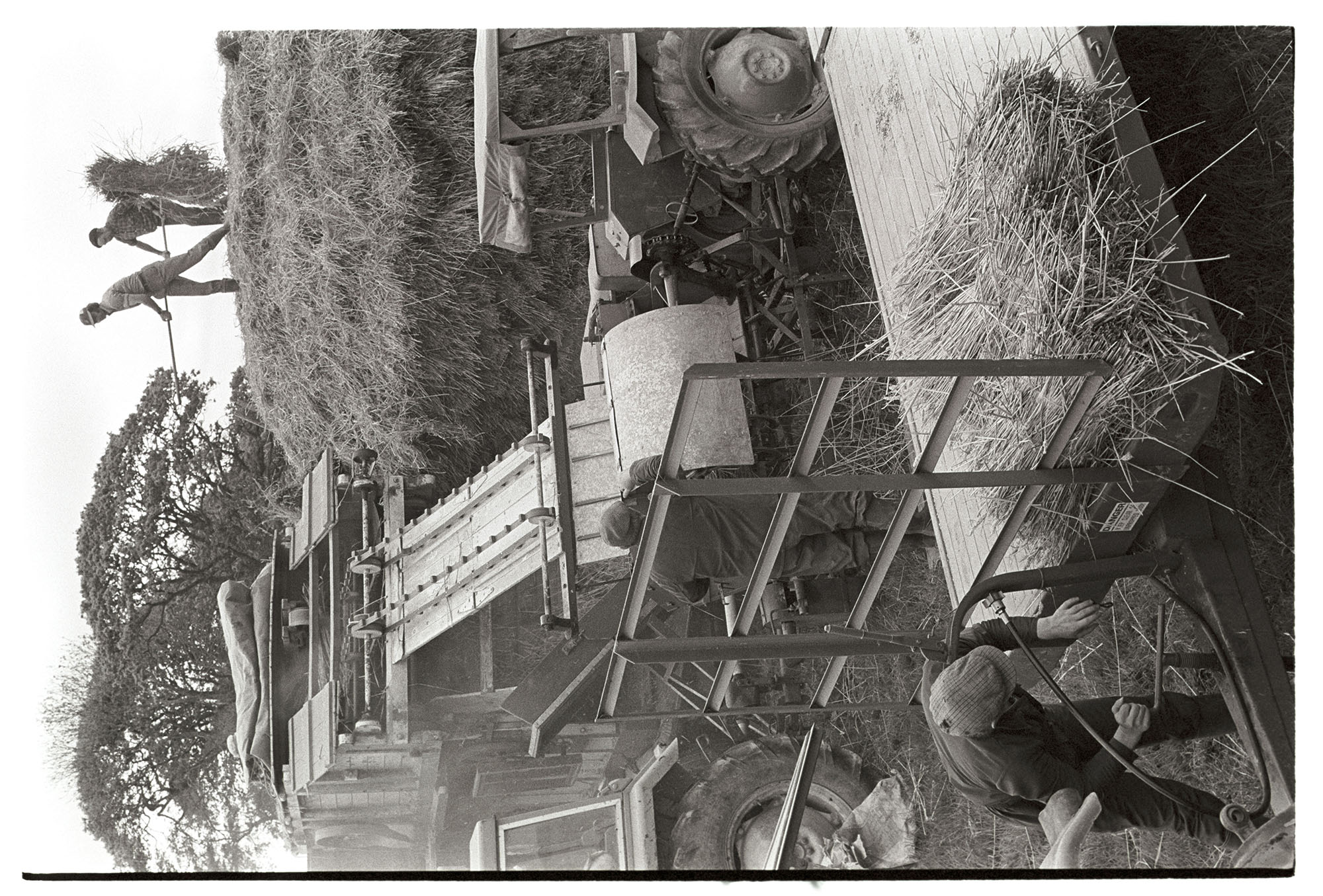 Reed comber, machine, wheat ricks, nitches loaded on trailer. <br /> [Two men stood on top of a wheat rick loading reed onto a reed comber attached to two tractors at Westacott Barton, Riddlecombe. Dudley Middleton is stood on the right. There is a trailer being loaded with nitches in the foreground.]