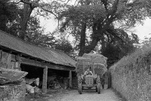 Dennis Harris bringing in the hay by James Ravilious
