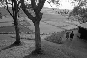 Two women walking in the park by James Ravilious