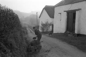 Phil Gent cleaning out a ditch by James Ravilious
