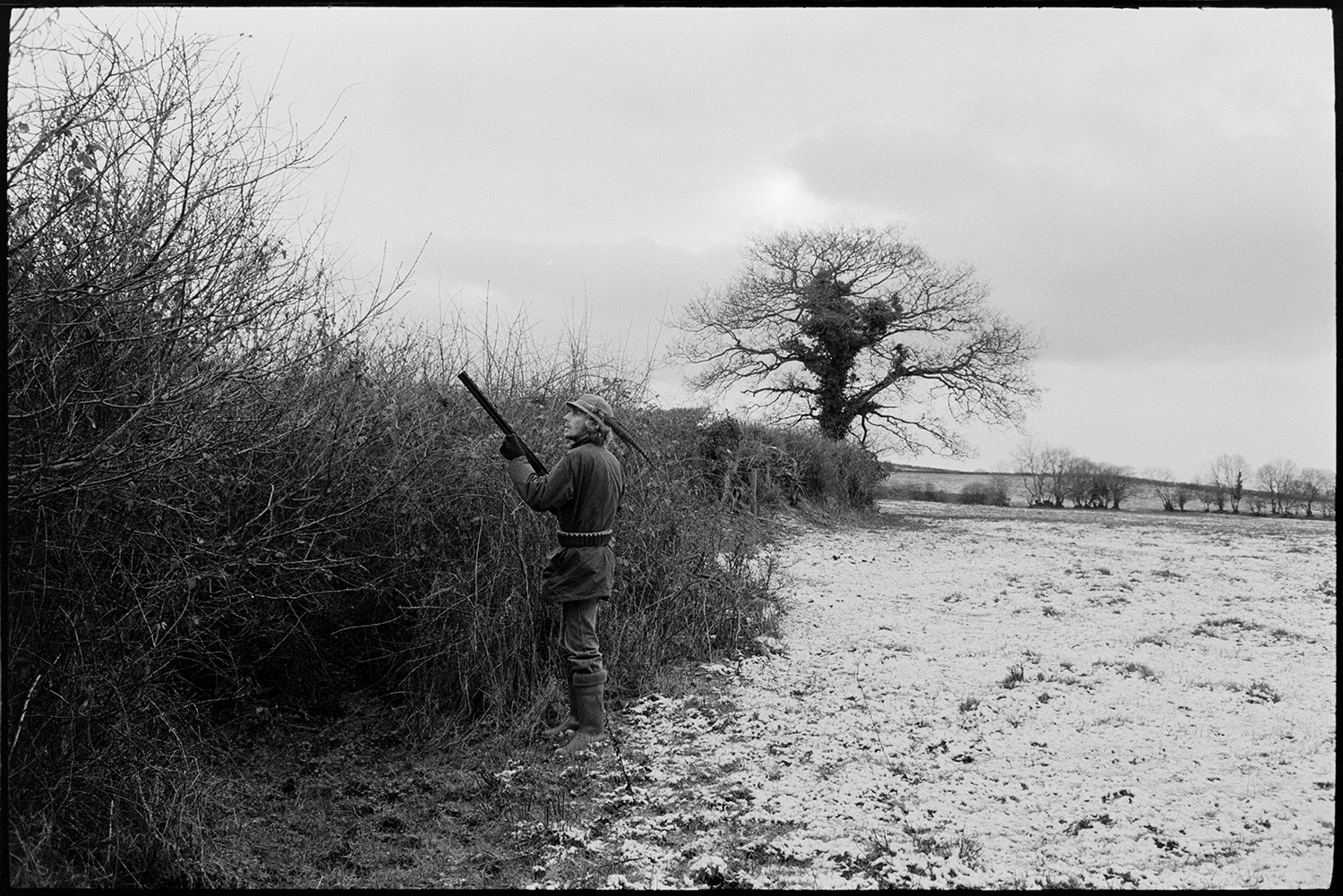 Men shooting in snowy land with guns and dog.<br /> [A man wearing a hat with a feather, carrying a gun, standing by a hedge, on a shoot in a snow covered field near Winkleigh.]
