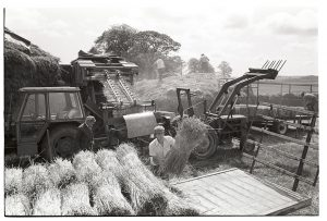 Reedcombing by James Ravilious