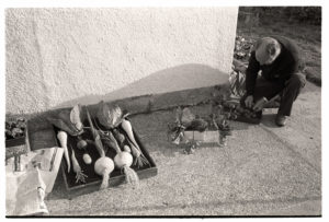 Michael Mitchell preparing vegetables for the flower show by James Ravilious