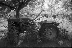 Tractor in nettles by James Ravilious