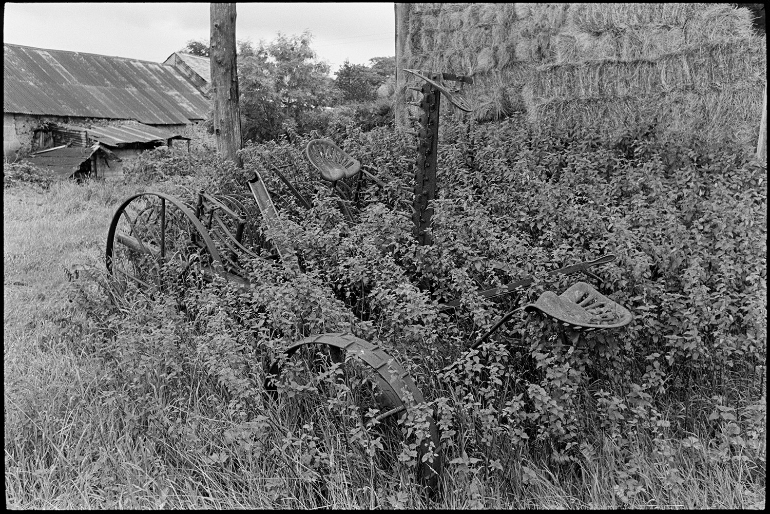 Barn with old farm machinery and horse drawn cart. Nettles. <br /> [A piece of old farm machinery, possibly a mower or cutter, overgrown with stinging nettles next to a stack of hay bales, possibly near Holsworthy. Another barn with a corrugated iron roof can be seen in the background.]