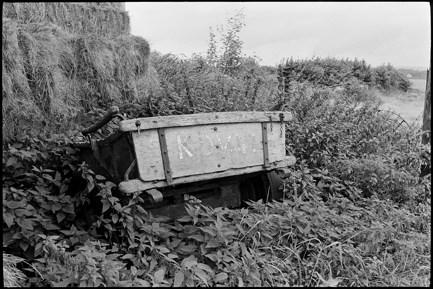 Barn with old farm machinery and horse drawn cart. Nettles. <br /> [An old wooden horse drawn cart overgrown by stinging nettles next to a stack of hay bales, possibly near Holsworthy.]