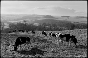 1985 – Beaford Archive