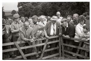 Sheep sale at Chulmleigh Fair by James Ravilious