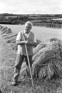 George Ayre with nitches of wheat by James Ravilious
