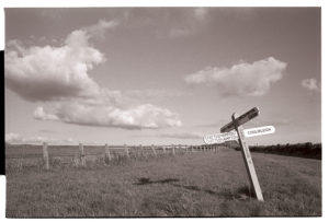 Pyne Meadow Cross by James Ravilious