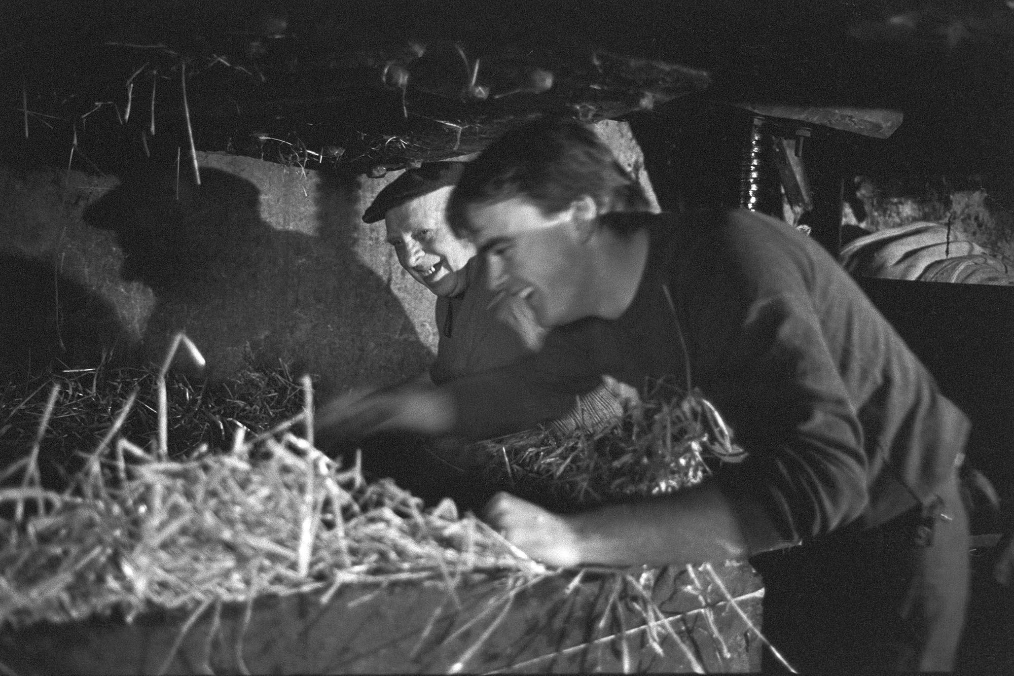 Farmers pressing cider in barn. Experienced man helping the younger generation! See old archive reference b02767. <br /> [Bill Bending, wearing a cap, showing a younger man, Mr Down, how to use a cider press at Spittle, Chulmleigh.]