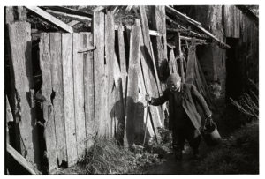 Reg Holland in the yard by James Ravilious