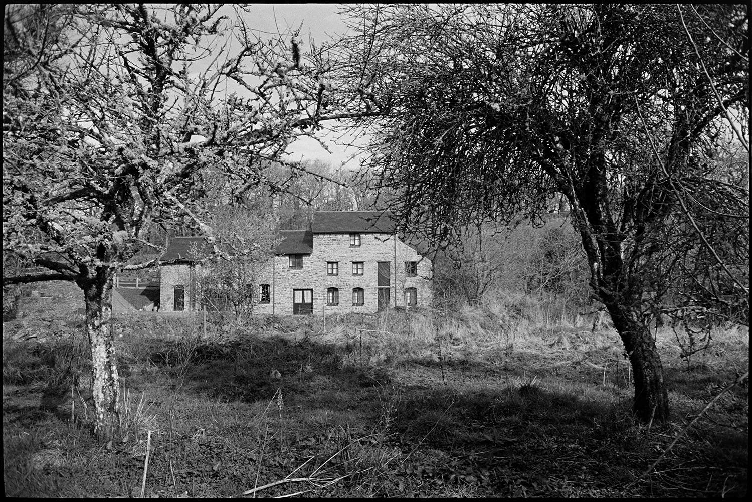 Converted mill. <br /> [A mill which has been converted into a residence in Chulmleigh. The mill is viewed between two trees in the foreground.]