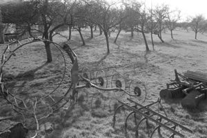 Farm Implements in an orchard by James Ravilious