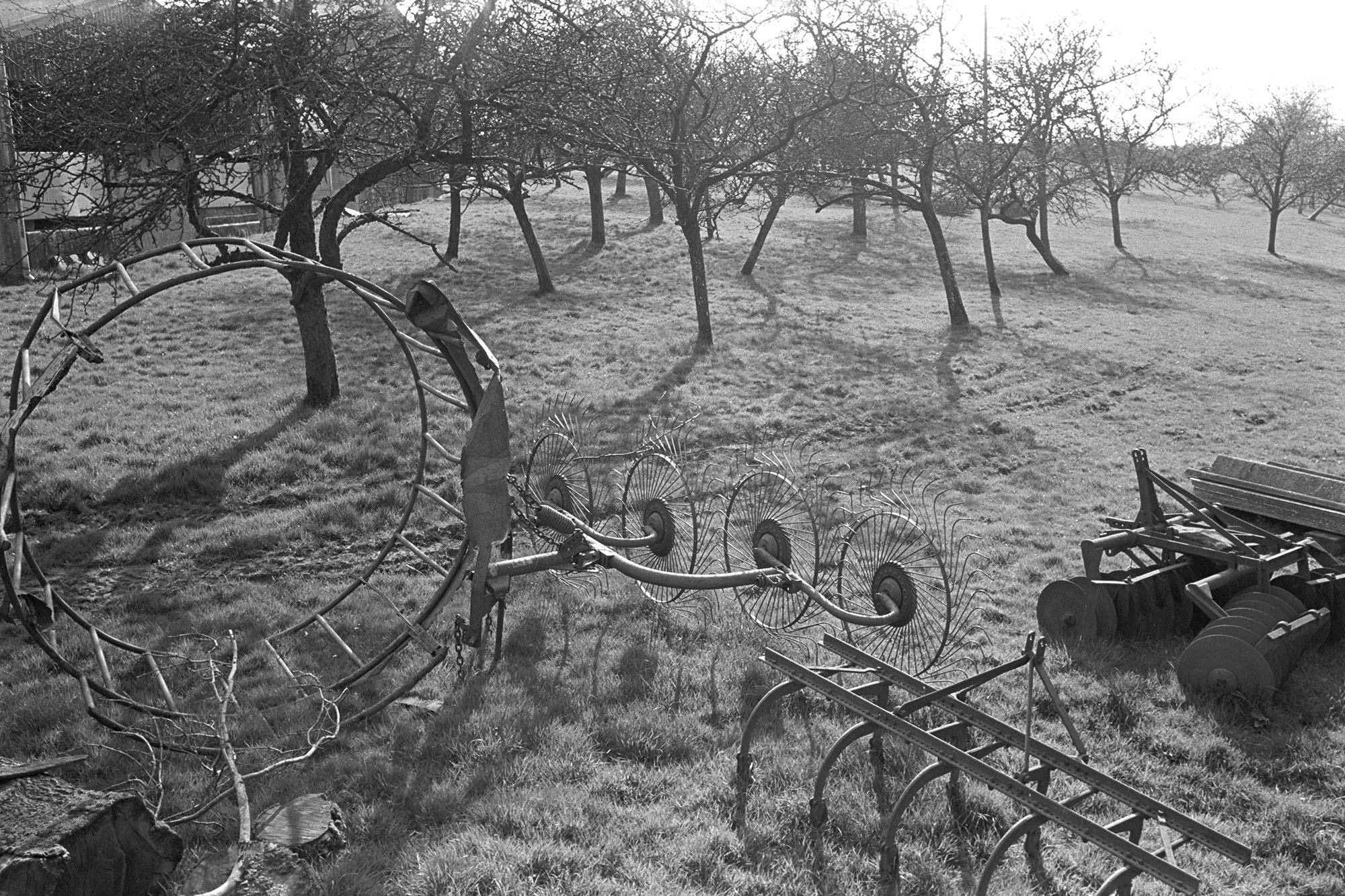 Orchards, farm machinery parked in orchard, whisk, harrow. <br /> [Farm machinery, including a whisk and harrow, parked in an orchard at Warkleigh, Satterleigh. Fruit trees are visible in the background.]