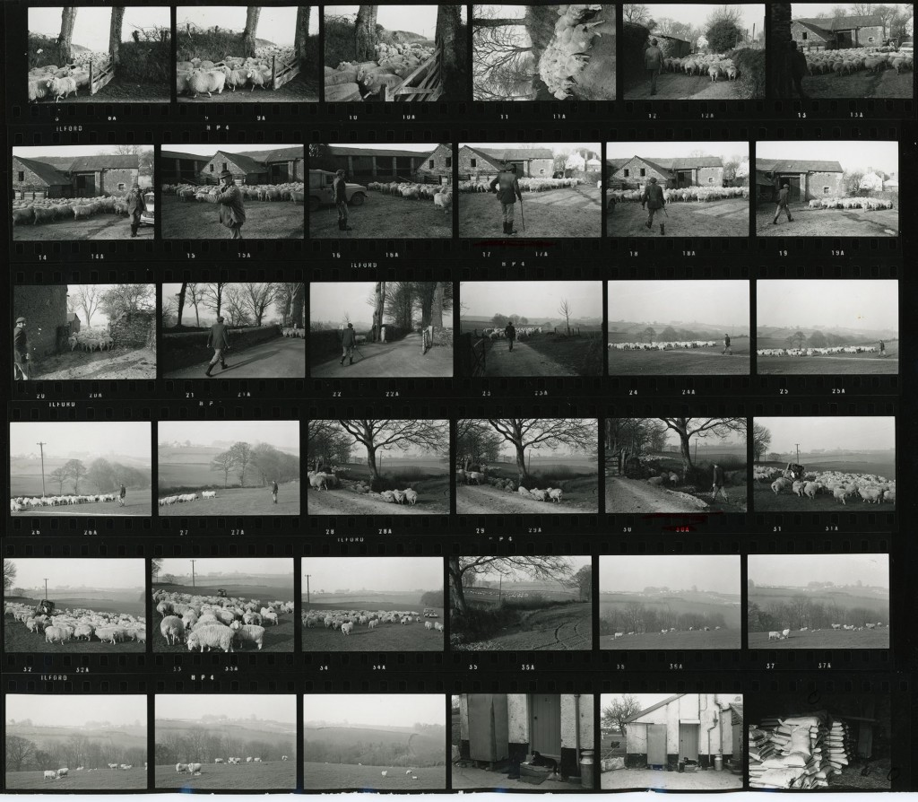 Contact Sheet 198 by James Ravilious