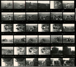 Contact Sheet 672 by James Ravilious