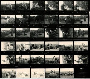 Contact Sheet 673 by James Ravilious