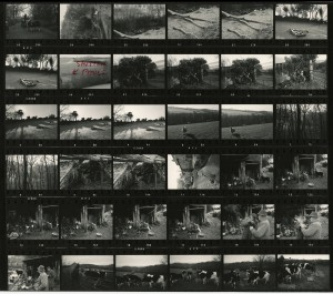 Contact Sheet 692 by James Ravilious