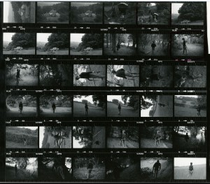 Contact Sheet 737 by James Ravilious