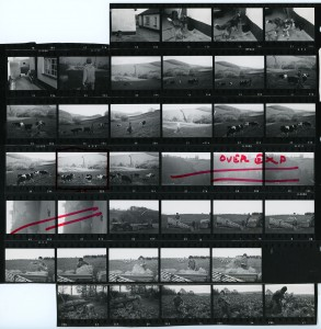 Contact Sheet 739 Part 2 by James Ravilious
