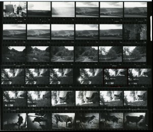 Contact Sheet 742 by James Ravilious