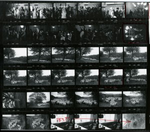 Contact Sheet 851 by James Ravilious
