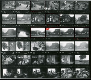 Contact Sheet 944 by James Ravilious