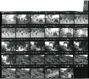 Contact Sheet 955 by James Ravilious