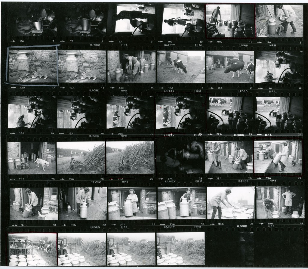 Contact Sheet 974 by James Ravilious