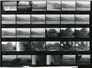 Contact Sheet 989 by James Ravilious