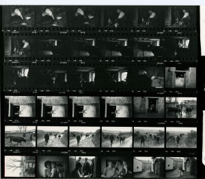 Contact Sheet 1002 by James Ravilious