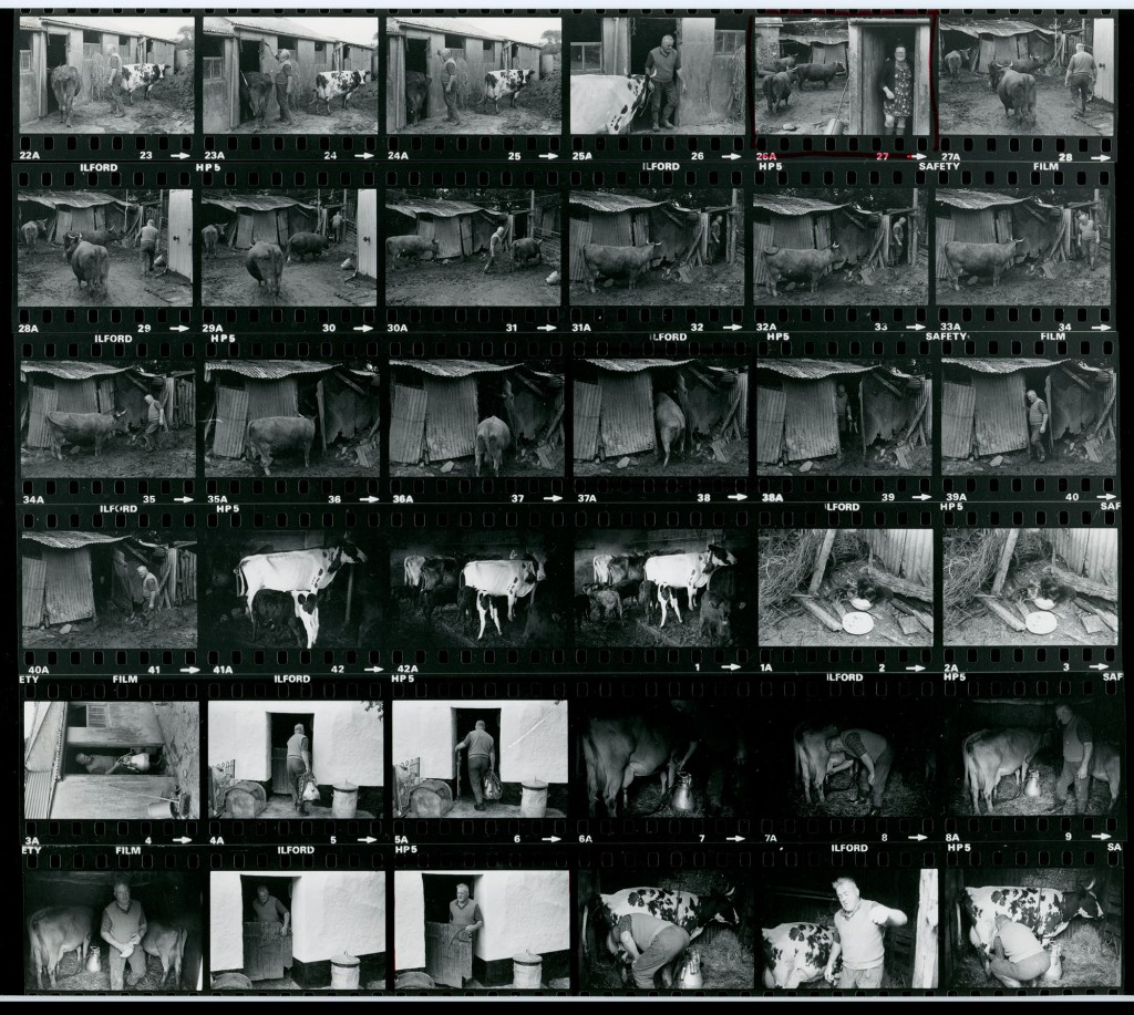 Contact Sheet 1075 by James Ravilious