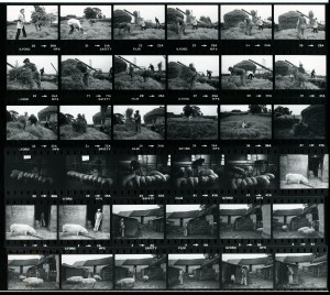 Contact Sheet 1105 by James Ravilious