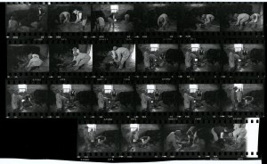 Contact Sheet 1179 by James Ravilious