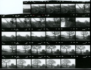 Contact Sheet 1181 Part 2 by James Ravilious
