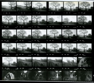 Contact Sheet 1182 by James Ravilious