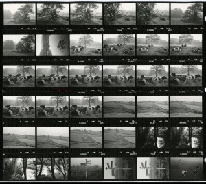Contact Sheet 1217 by James Ravilious