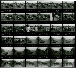 Contact Sheet 1423 by James Ravilious