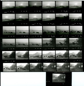 Contact Sheet 1428 by James Ravilious