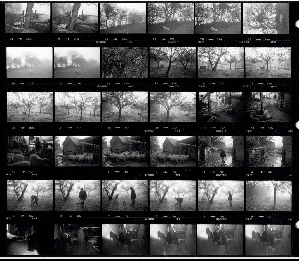 Contact Sheet 1481 by James Ravilious