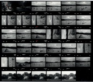 Contact Sheet 1546 by James Ravilious